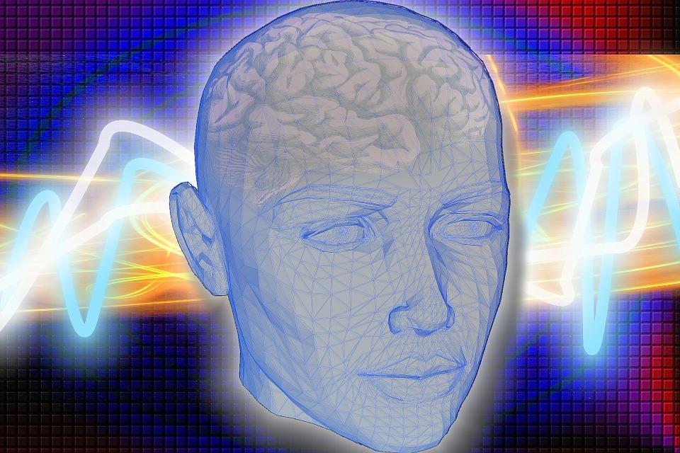 ¿Cómo guarda el cerebro humano los recuerdos?
