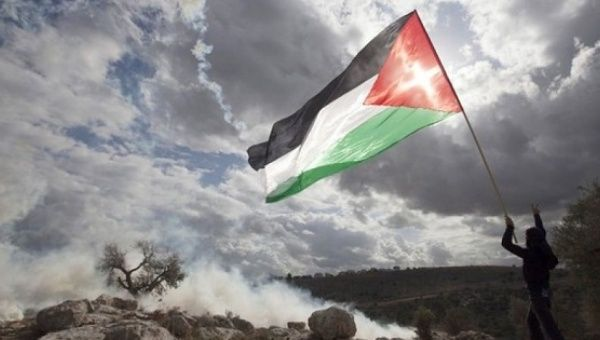 A boy waves the Palestinian flag in the occupied West Bank