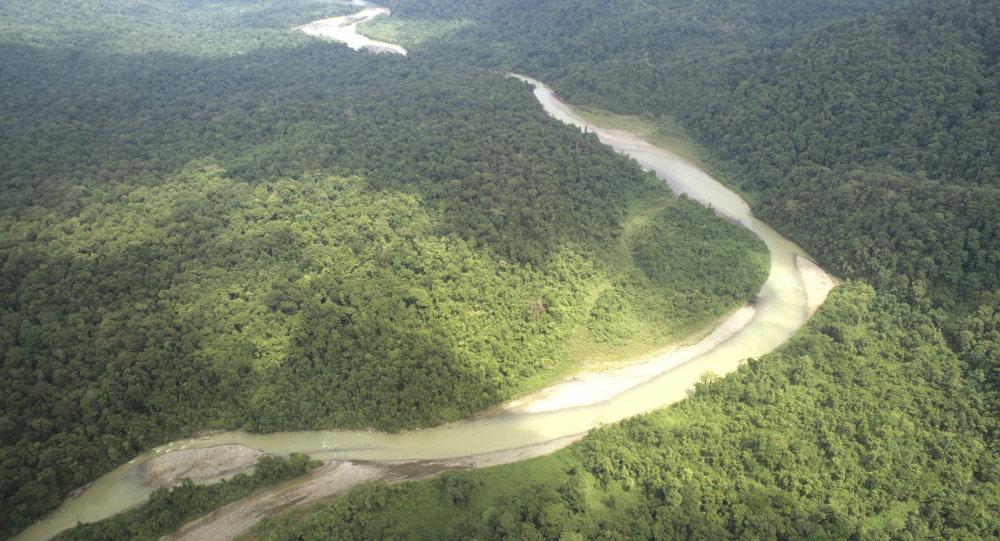 Lanzan estudio sobre territorios indígenas en la Amazonía