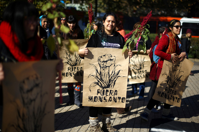"A demonstrator holds up a sign that reads ""Get out Monsanto"" during a protest against seeds company Monsanto in Santiago, Chile, May 20, 2017."