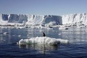 Antarctic glaciers are threatened by climate change, and are a major factor in sea level rise.