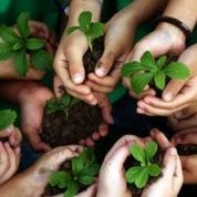 Ambientalismo cualificado y sus desafíos