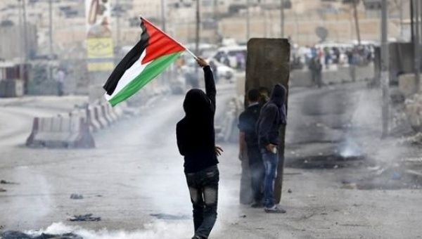 A Palestinian protester waves the Palestinian flag.