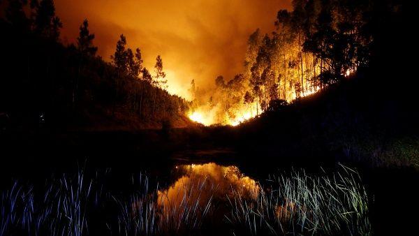 Se trata del incendio más letal ocurrido en Portugal en los últimos 50 años.