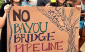 "Bayou Bridge Pipeline is in violation of the Louisiana State Constitution as ""it endangers drinking water, would destroy life-giving and protecting wetlands."""