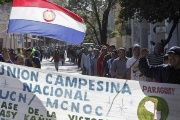 Campesinos marched in the captial of Paraguay to demand greater government support, July 25, 2017.