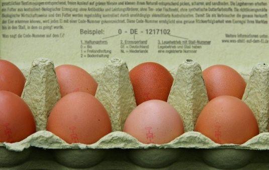 Fipronil fue detectado en huevos suministrados desde Bélgica y Países Bajos a Alemania.
