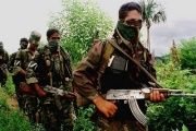 Demobilizing FARC-EP leaders have said that paramilitary group continue to occupy areas of Colombia, murdering social and human rights leaders.