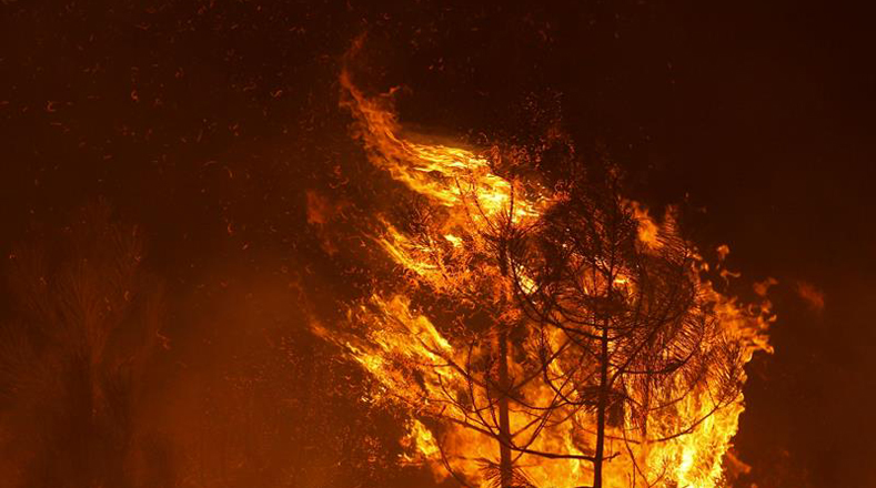 En Vila de Rei trabajan 481 bomberos con unos 130 vehículos terrestres y 8 medios aéreos para extinguir el fuego.