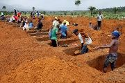 Workers are seen digging graves at Paloko cemetery in Waterloo, Sierra Leone.