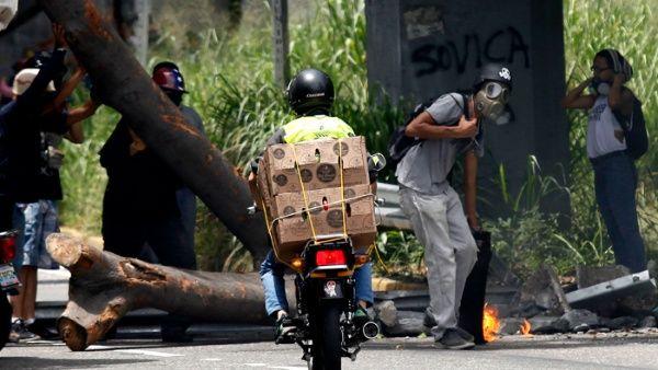 Resultado de imagen para 3.000 árboles talados en Venezuela