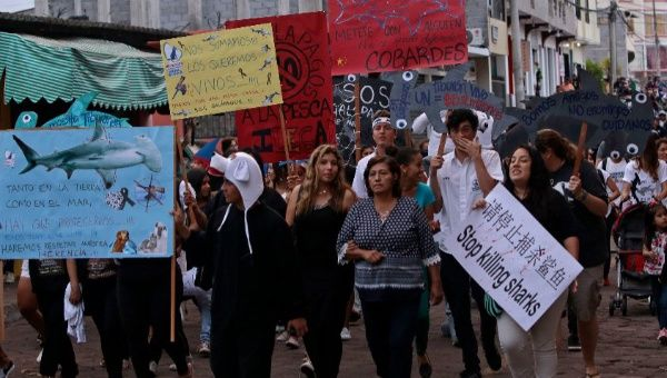 Galapagos residents protest against illegal fishing in the islands