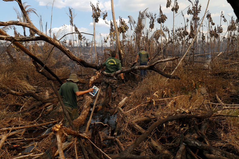 Brazils Amazon Under Constant Threat From Neoliberalism - Natural resources of brazil