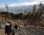 Deforestation is seen in a village in Carhuaz in the Andean region of Ancash, Peru.
