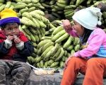 Children eat in front of a huge pile of bananas in La Paz, Bolivia.