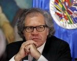 Organization of American States Secretary General Luis Almagro