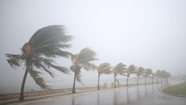 Palm trees sway in the wind prior to the arrival of the Hurricane Irma in Caibarien, Cuba.