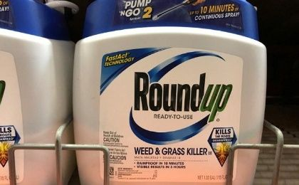 Monsanto awaits a renewal license for Roundup in the European Union.
