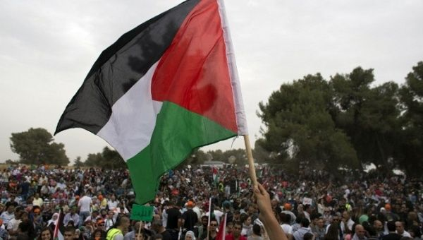 Illustrative photo of a protester holding up a Palestinian flag.