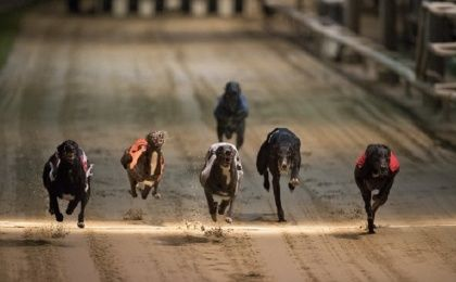 Saturday marks the final demise of greyhound racing in London, closing a chapter of British social culture in the capital.