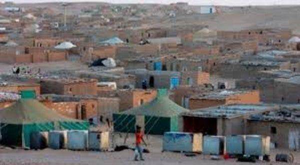 Tres Generaciones De Saharauis Han Vivido Como Refugiados Noticias Telesur