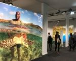 Delegates walk past a poster showing a man holding a turtle and other pictures from the Pacific Islands during the COP23 UN Climate Change Conference 2017, hosted by Fiji but held in Bonn, Germany November 10, 2017.
