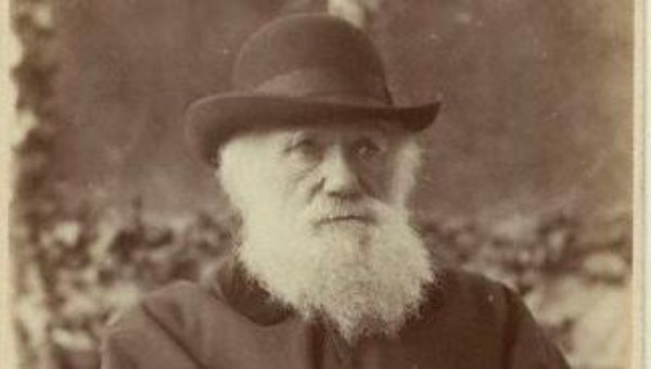 an analysis of charles darwins origin of species Publication of the origin of species, charles darwin kept detailed notes of each  book he  amenable to computational analysis previously.