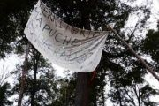 Members of the Indigenous Mapuche community in Argentina protest against state-sponsored violence on their sacred lands.