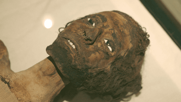 A royal mummy shown in the Museum of Egyptian Antiquities in Cairo.