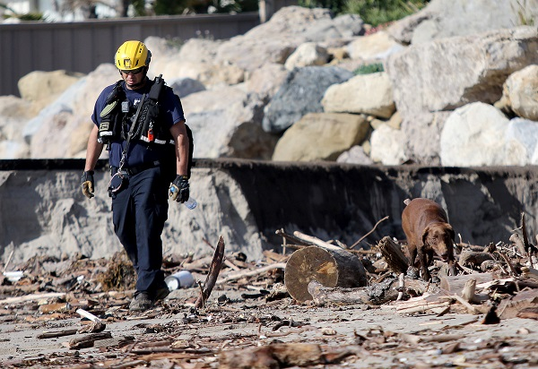 Los Angeles Search and Rescue officer Jeff Niu and his dog Faith search for bodies along the beach.