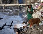A woman collects garbages from a dump yard near a tannery at Hazaribagh along the polluted Buriganga river in Dhaka.