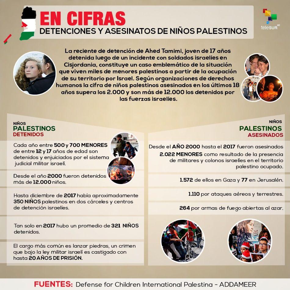 Cifras de las detenciones y asesinatos de niños palestinos