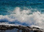 Según la ONU, cada año el mundo usa 500.000 millones de bolsas plásticas y,  al menos 8 millones de toneladas de ese material terminan en océanos.