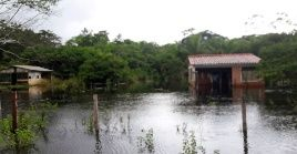 Las casas contarán con todos los servicios básicos como agua potable, electricidad y alcantarillado.