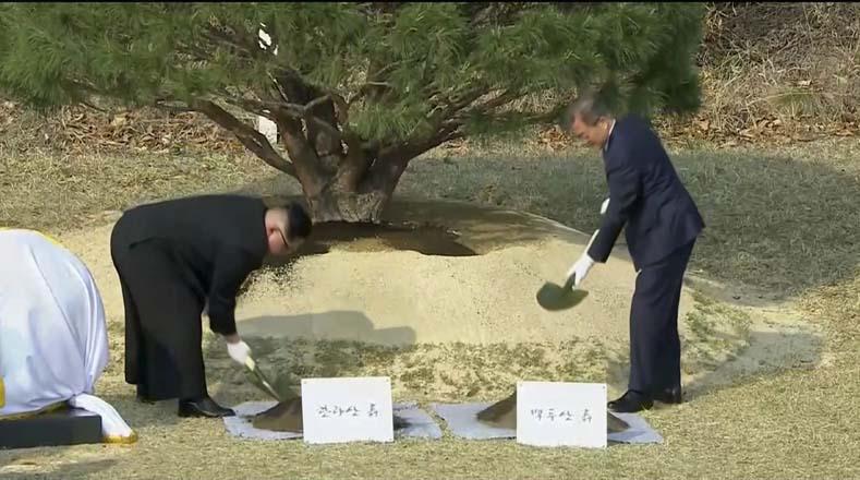 Entre los actos simbólicos, realizaron una ceremonia de paz con la siembra de un pino.
