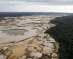 An area deforested by illegal gold mining is seen in a zone known as Mega 14, in the southern Amazon region of Madre de Dios, Peru, July 13, 2015.