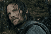 Hollywood actor Viggo Mortensen is best known for his role as Aragorn in The Lord of the Rings.