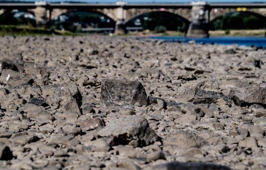 Hasta 21 días sin lluvias han pasado en la zona oriental de El Salvador.