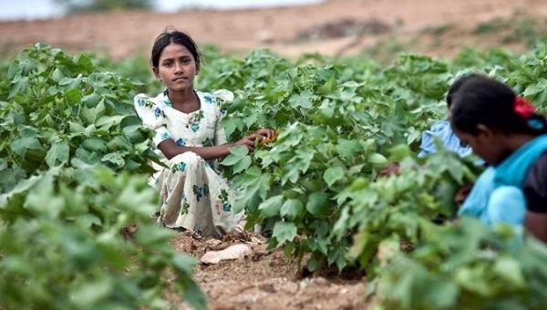 Las mujeres y las niñas representan el 71 por ciento de todas las víctimas de la esclavitud moderna.
