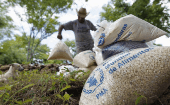 A farmer moves bags of provisions, donated by the United Nations World Food Programme (WFP), during a distributing of food aid to families affected by the drought in the village of Orocuina, August 28, 2014.