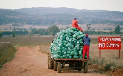 Farm workers harvest cabbages at a farm in Eikenhof, near Johannesburg, South Africa.