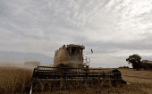 Farmers harvest soybeans in Argentina