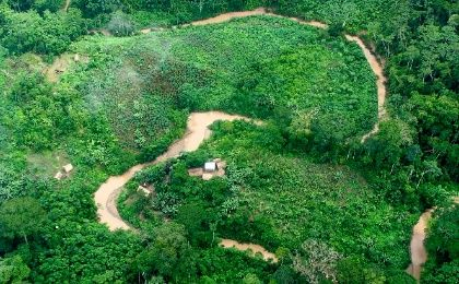 The Peruvian Amazon is being preyed upon by various projects that jeopardize its environmental integrity.