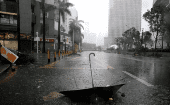 An umbrella is seen on a road after a rainstorm as Typhoon Mangkhut makes landfall in Guangdong province, in Shenzhen, China September 16, 2018