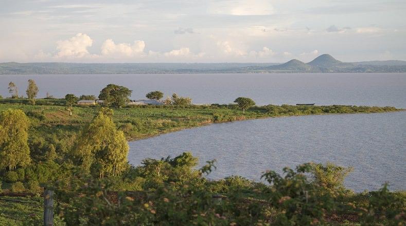 El Lago Victoria, también conocido como Victoria Nyanza, está ubicado en la zona centro-oriental de África entre Uganda, Tanzania y Kenia. Su superficie es de 69. 482 km². Es el tercer lago de agua dulce más grande del mundo y se encuentra en peligro por la contaminación ambiental y las aguas residuales, hecho que ha causado la pérdida del habitad del río y también la desaparición de especies endémicas del mismo.