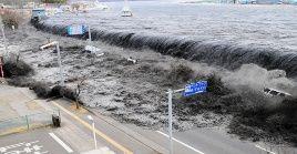 En 2015, la Asamblea General de la ONU designó el 5 de noviembre como el Día Mundial de Concienciación sobre los Tsunamis.