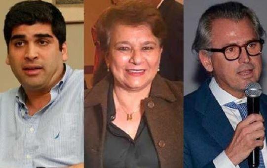 Los tres aspirantes a la vicepresidencia de Ecuador seránOtto Sonnenholzner,Nancy Vasco de Maldonado y Agustín Albán.