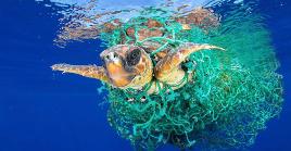 5 negativas prácticas con las que dañamos las aguas del mundo
