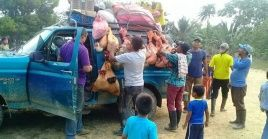 Los desplazamientos masivos de familias campesinas se han producido por amenazas de gruposcriminales en la región.