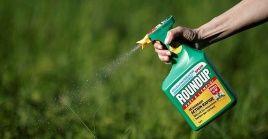 Se trata del segundo fallo condenatorio relacionado al herbicida Roundup que pesa sobre Monsanto en EE.UU.